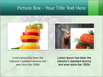 0000074344 PowerPoint Template - Slide 18