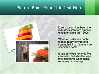 0000074344 PowerPoint Template - Slide 20