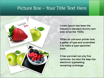 0000074344 PowerPoint Template - Slide 23