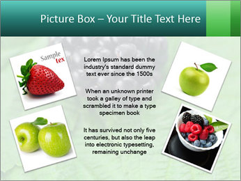 0000074344 PowerPoint Template - Slide 24