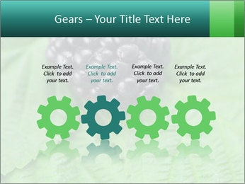 0000074344 PowerPoint Template - Slide 48