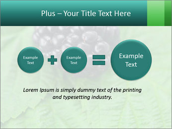 0000074344 PowerPoint Template - Slide 75