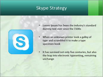 0000074344 PowerPoint Template - Slide 8