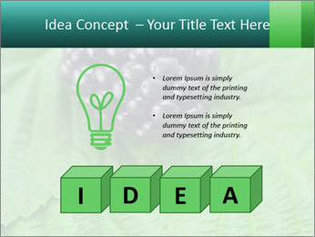 0000074344 PowerPoint Template - Slide 80