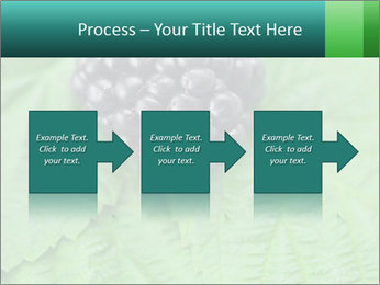 0000074344 PowerPoint Template - Slide 88