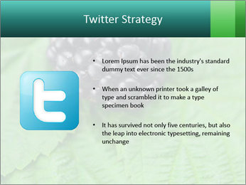0000074344 PowerPoint Template - Slide 9