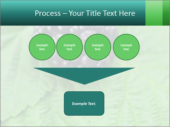 0000074344 PowerPoint Template - Slide 93