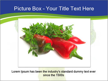 0000074349 PowerPoint Template - Slide 15