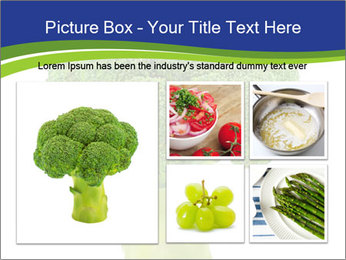 0000074349 PowerPoint Template - Slide 19