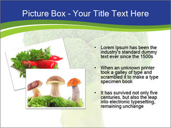 0000074349 PowerPoint Template - Slide 20