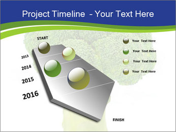 0000074349 PowerPoint Template - Slide 26