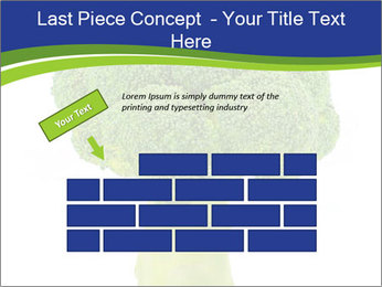 0000074349 PowerPoint Template - Slide 46