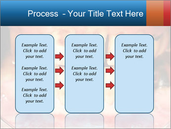 0000074358 PowerPoint Templates - Slide 86