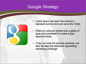 0000074362 PowerPoint Templates - Slide 10