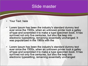 0000074362 PowerPoint Templates - Slide 2