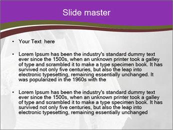 0000074362 PowerPoint Template - Slide 2