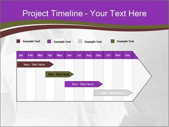 0000074362 PowerPoint Template - Slide 25