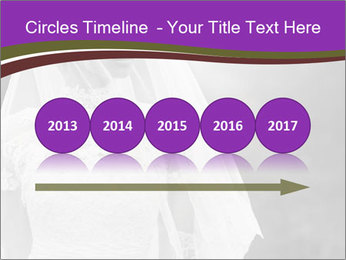 0000074362 PowerPoint Templates - Slide 29