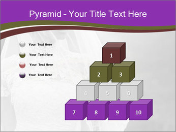0000074362 PowerPoint Templates - Slide 31