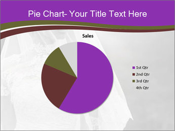 0000074362 PowerPoint Template - Slide 36