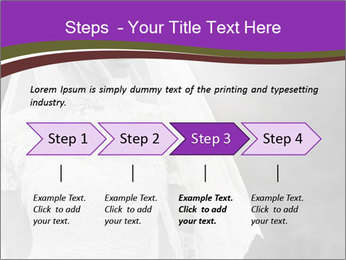 0000074362 PowerPoint Templates - Slide 4