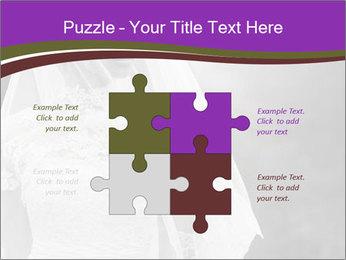0000074362 PowerPoint Template - Slide 43