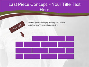 0000074362 PowerPoint Templates - Slide 46