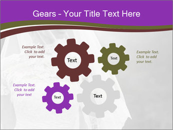 0000074362 PowerPoint Templates - Slide 47