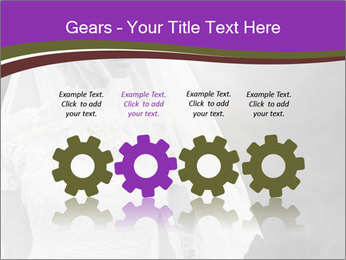 0000074362 PowerPoint Templates - Slide 48