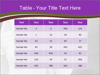0000074362 PowerPoint Templates - Slide 55