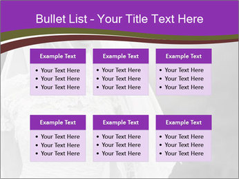 0000074362 PowerPoint Templates - Slide 56