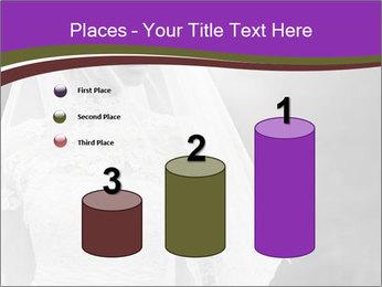 0000074362 PowerPoint Template - Slide 65