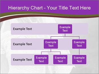 0000074362 PowerPoint Template - Slide 67