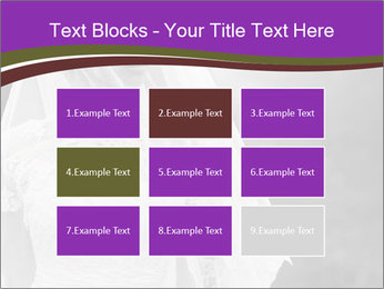 0000074362 PowerPoint Template - Slide 68