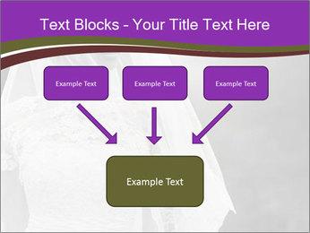 0000074362 PowerPoint Template - Slide 70