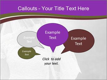 0000074362 PowerPoint Template - Slide 73