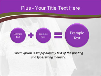0000074362 PowerPoint Template - Slide 75