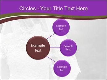 0000074362 PowerPoint Template - Slide 79