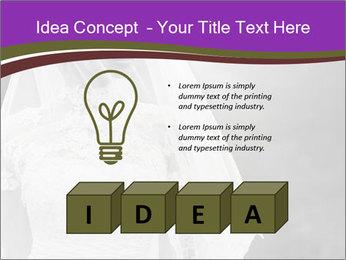 0000074362 PowerPoint Template - Slide 80