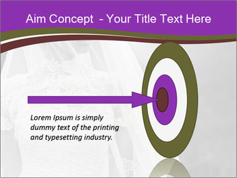 0000074362 PowerPoint Templates - Slide 83