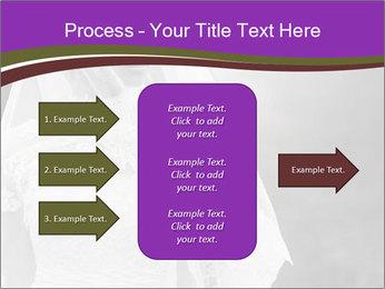 0000074362 PowerPoint Template - Slide 85