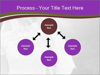 0000074362 PowerPoint Template - Slide 91