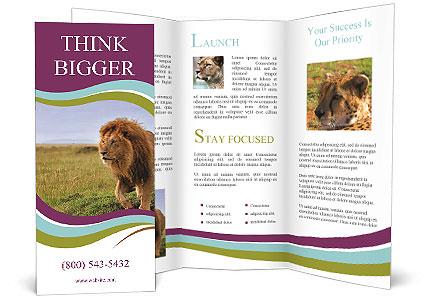 0000074366 Brochure Template