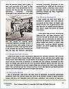 0000074367 Word Template - Page 4