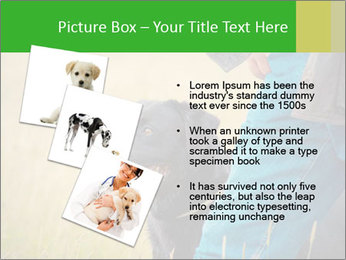 0000074373 PowerPoint Template - Slide 17