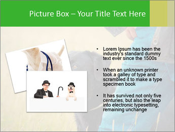0000074373 PowerPoint Template - Slide 20