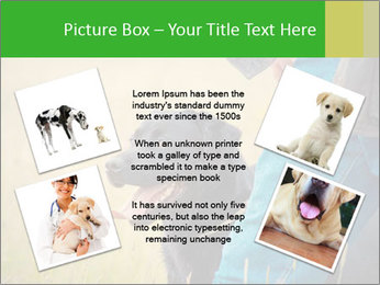 0000074373 PowerPoint Template - Slide 24