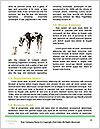 0000074373 Word Templates - Page 4