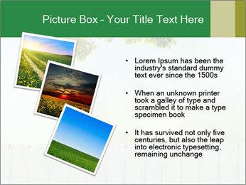 0000074377 PowerPoint Template - Slide 17