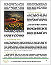 0000074377 Word Templates - Page 4